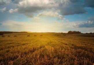 Medioambiente: Entrevista a Juan Torres Zalba para Navarra Capital