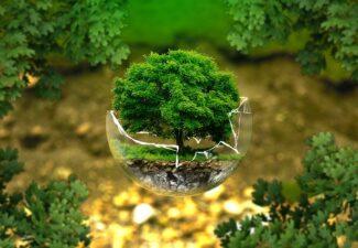 Proyecto de Ley Foral de Actividades con incidencia ambiental